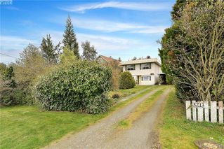 Photo 19: 3213 Wascana Street in VICTORIA: SW Gorge Single Family Detached for sale (Saanich West)  : MLS®# 407845