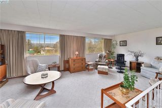 Photo 16: 3213 Wascana St in VICTORIA: SW Gorge Single Family Detached for sale (Saanich West)  : MLS®# 810520
