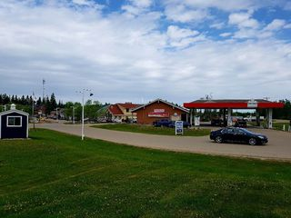 Photo 27: 2 Crystal Key Drive: Rural Wetaskiwin County House for sale : MLS®# E4151020