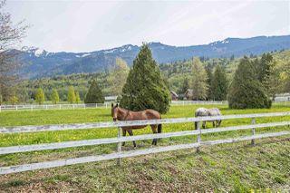 Photo 20: 9589 MCMILLAN Road in Rosedale: Rosedale Popkum House for sale : MLS®# R2363064