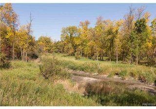 Photo 19: 103 1143 St Anne's Road in Winnipeg: River Park South Condominium for sale (2F)  : MLS®# 1911252
