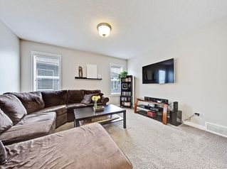 Photo 19: 17 MASTERS Common SE in Calgary: Mahogany Detached for sale : MLS®# C4255952
