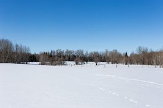 Photo 22: 27414 TWP RD 544: Rural Sturgeon County House for sale : MLS®# E4177196