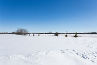 Photo 26: 27414 TWP RD 544: Rural Sturgeon County House for sale : MLS®# E4177196