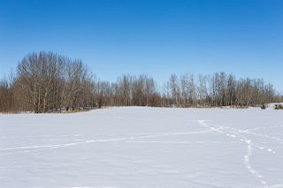 Photo 25: 27414 TWP RD 544: Rural Sturgeon County House for sale : MLS®# E4177196