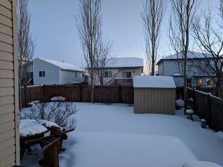 Photo 29: 3 Doucette Place in St. Albert: House for rent
