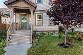 Photo 44: 95 SUMMERWOOD Drive: Sherwood Park House for sale : MLS®# E4216353