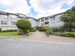 """Photo 1: 303 14885 105 Avenue in Surrey: Guildford Condo for sale in """"REVIVA"""" (North Surrey)  : MLS®# R2508247"""