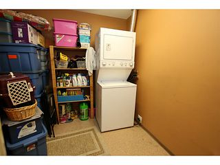 """Photo 19: 307 549 COLUMBIA Street in New Westminster: Downtown NW Condo for sale in """"C2C LOFTS AND FLATS"""" : MLS®# V1036506"""