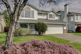 Photo 2: 20145 119A Ave West Maple Ridge Basement Entry Home For Sale