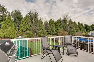 Photo 28: 20145 119A Ave West Maple Ridge Basement Entry Home For Sale