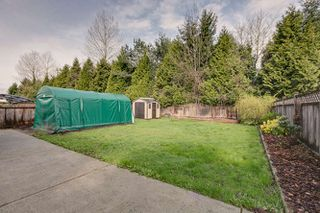 Photo 30: 20145 119A Ave West Maple Ridge Basement Entry Home For Sale