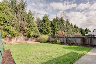 Photo 31: 20145 119A Ave West Maple Ridge Basement Entry Home For Sale