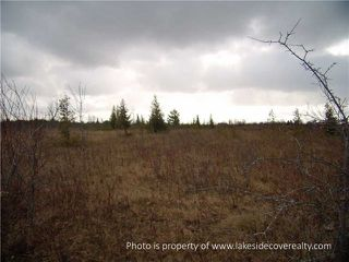 Photo 9: 2489 Concession Road 3 Road in Ramara: Brechin Property for sale : MLS®# X3371303