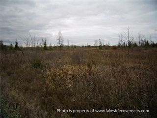 Photo 17: 2489 Concession Road 3 Road in Ramara: Brechin Property for sale : MLS®# X3371303