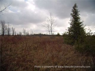 Photo 4: 2489 Concession Road 3 Road in Ramara: Brechin Property for sale : MLS®# X3371303