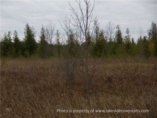 Photo 15: 2489 Concession Road 3 Road in Ramara: Brechin Property for sale : MLS®# X3371303