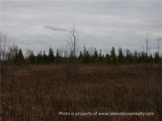 Photo 14: 2489 Concession Road 3 Road in Ramara: Brechin Property for sale : MLS®# X3371303