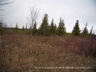 Photo 7: 2489 Concession Road 3 Road in Ramara: Brechin Property for sale : MLS®# X3371303