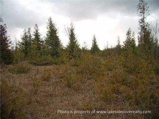 Photo 3: 2489 Concession Road 3 Road in Ramara: Brechin Property for sale : MLS®# X3371303