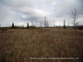 Photo 20: 2489 Concession Road 3 Road in Ramara: Brechin Property for sale : MLS®# X3371303