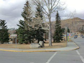 Photo 26: 204 CENTRE Avenue: Cochrane House for sale : MLS®# C4055784