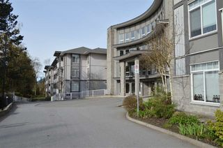 "Photo 20: 101 13277 108 Avenue in Surrey: Whalley Condo for sale in ""PACIFICA"" (North Surrey)  : MLS®# R2154859"