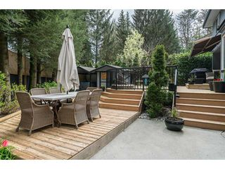 "Photo 2: 11 31600 OLD YALE Road in Abbotsford: Abbotsford West House for sale in ""Mahoney Station"" : MLS®# R2160094"