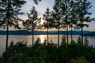 Photo 12: 8579 ANSELL Place in West Vancouver: Howe Sound House for sale : MLS®# R2176712
