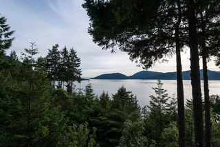 Photo 11: 8579 ANSELL Place in West Vancouver: Howe Sound House for sale : MLS®# R2176712