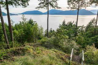 Photo 4: 8579 ANSELL Place in West Vancouver: Howe Sound House for sale : MLS®# R2176712