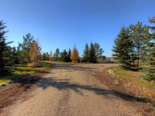 Photo 8: 53134 RR 225 Road: Rural Strathcona County Land Commercial for sale : MLS®# E4083673