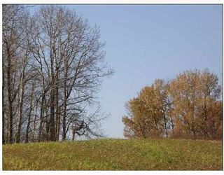 Photo 11: 20 53214 RGE RD 13 Road: Rural Parkland County Rural Land/Vacant Lot for sale : MLS®# E4099596