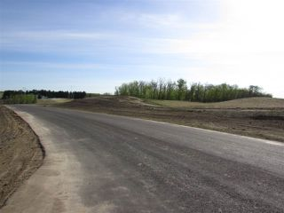 Photo 6: 20 53214 RGE RD 13 Road: Rural Parkland County Rural Land/Vacant Lot for sale : MLS®# E4099596