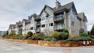 """Photo 1: 211 1466 PEMBERTON Avenue in Squamish: Downtown SQ Condo for sale in """"Marina Estates"""" : MLS®# R2254672"""