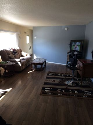 Photo 5: 21 Rim Road in Edmonton: Zone 42 Mobile for sale : MLS®# E4107350