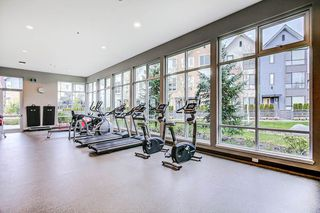 "Photo 17: 37 2325 RANGER Lane in Port Coquitlam: Riverwood Townhouse for sale in ""Freemont Blue"" : MLS®# R2271071"