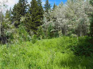 Photo 7: LOT 24 ROSE Drive: 150 Mile House Land for sale (Williams Lake (Zone 27))  : MLS®# R2285204