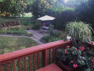 Photo 8: 41 Meadowacres Drive in Toronto: Tam O'Shanter-Sullivan House (Bungalow) for sale (Toronto E05)  : MLS®# E4202792