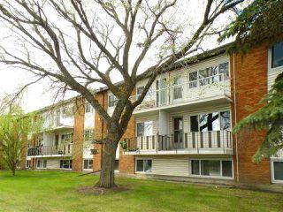Main Photo: 201 14903 92 Avenue in Edmonton: Zone 22 Condo for sale : MLS®# E4140213
