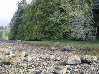 Photo 8: LT 9 & 10 Hecate Cove in QUATSINO: NI Port Hardy Land for sale (North Island)  : MLS®# 804330