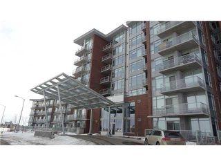 Main Photo: 405 2606 109 Street in Edmonton: Zone 16 Condo for sale : MLS®# E4142952