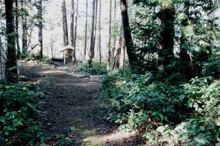 Photo 13: LOT 9 TRAIL Island in Sechelt: Sechelt District House for sale (Sunshine Coast)  : MLS®# R2348962