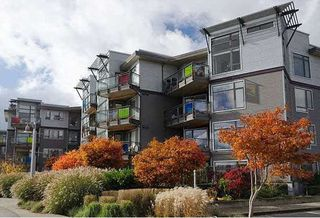 "Photo 1: 201 14300 RIVERPORT Way in Richmond: East Richmond Condo for sale in ""Waterstone Pier"" : MLS®# R2349944"