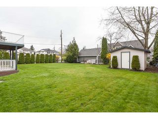 "Photo 19: 5005 214A Street in Langley: Murrayville House for sale in ""Murrayville"" : MLS®# R2354511"
