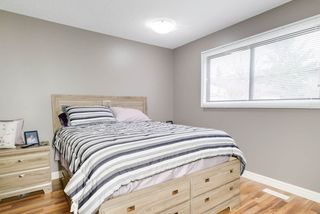 Photo 9: 3711 17A Avenue in Edmonton: Zone 29 House for sale : MLS®# E4155948