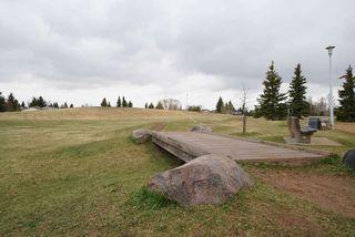 Photo 19: 3711 17A Avenue in Edmonton: Zone 29 House for sale : MLS®# E4155948