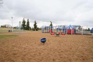 Photo 18: 3711 17A Avenue in Edmonton: Zone 29 House for sale : MLS®# E4155948