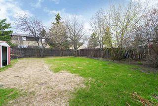 Photo 16: 3711 17A Avenue in Edmonton: Zone 29 House for sale : MLS®# E4155948
