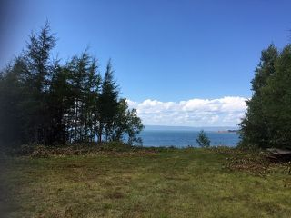 Photo 7: 1883 West Apple River in Apple River: 102S-South Of Hwy 104, Parrsboro and area Residential for sale (Northern Region)  : MLS®# 201910095